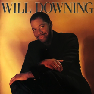 Will Downing ‎- Will Downing (LP) (VG/VG)